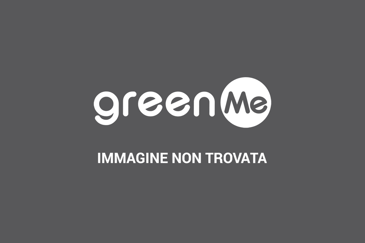 Tende Da Sole Per Porta Finestra.Riciclo Creativo 10 Tende Per Interni Dalla Spazzatura Greenme