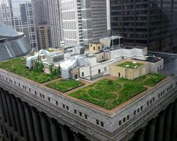 green roof a Chicago