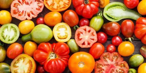pomodori varietà