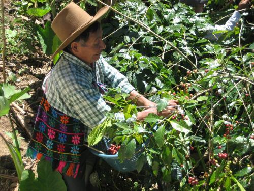Guatemala_222