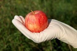 frutta_contaminata