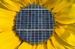 margherita_fotovoltaica