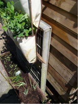 giardino_verticale_portaoggetti2