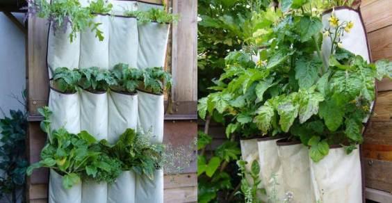 giardino verticale portaoggetti home