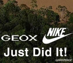 nike-e-geox-just-did-it