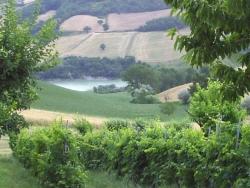 turismo_verde