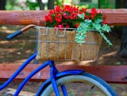 Eco_cestini_bicicletta_riciclati