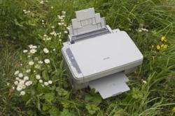 stampare eco