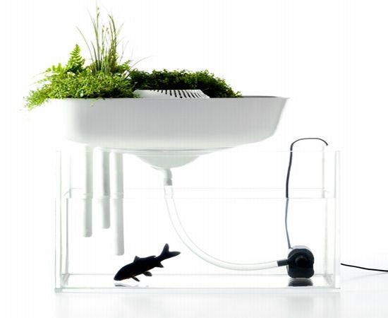 Floating_garden_ecosystem