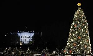 1_Obama_National_Christmas_Tree.sff_300