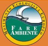Fare-Ambiente-Logo