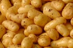 ricette_vegane_con_patate
