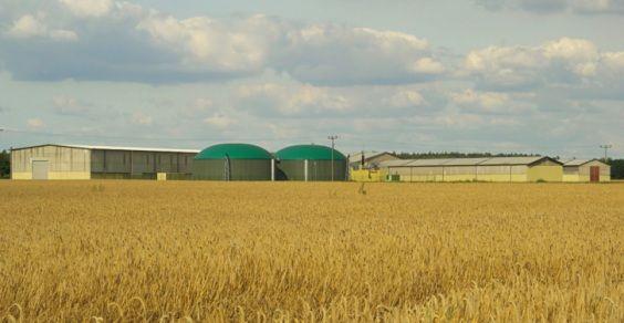 agrienergia_biomasse