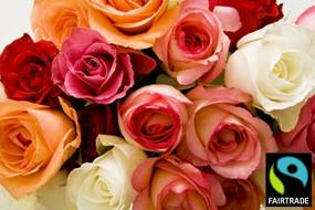 rose-fairtrade
