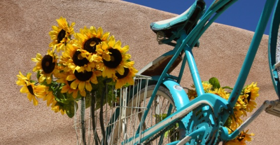 accessori_bici_eco-chic