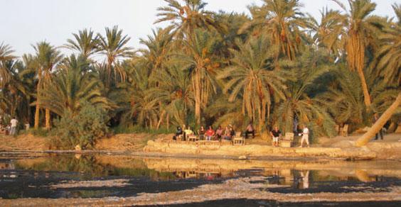 oasi_di_siwa