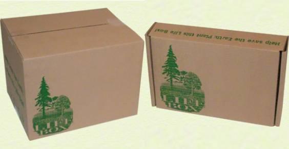 Life-Box_main