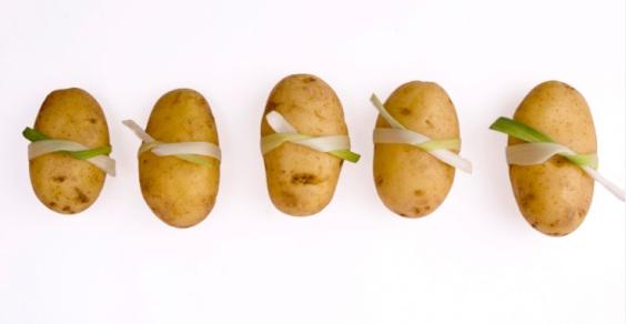 batteria_patata