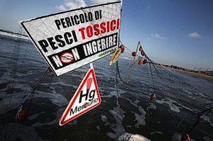 sogliole_tossiche_nel_tirreno_20100805_1661834350