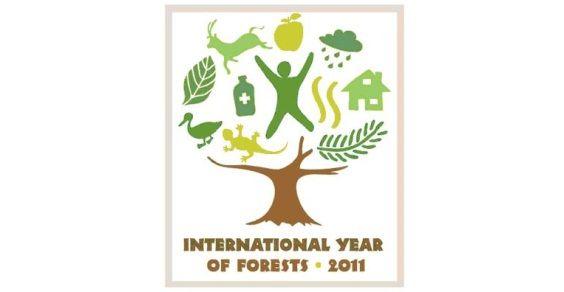 anno_foreste
