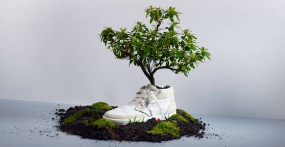 oat_sneakers