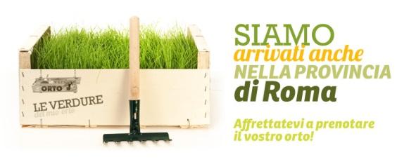 verdure_del_mio_orto2