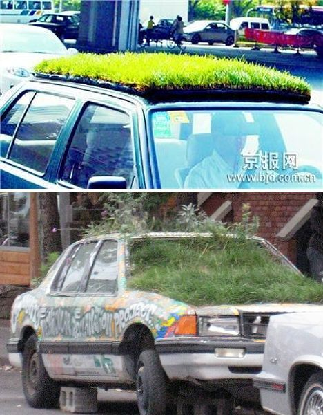 crazy-green-roofs-cars