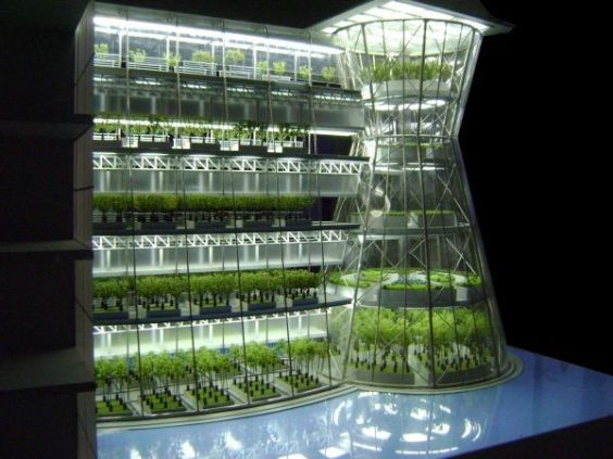 urban-farming-