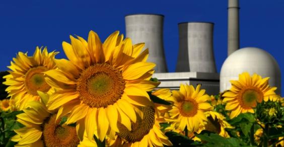 emendamento_stop_nucleare_in_Italia