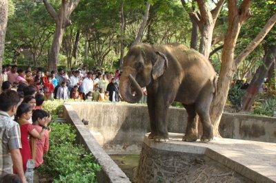 mumbai_zoo