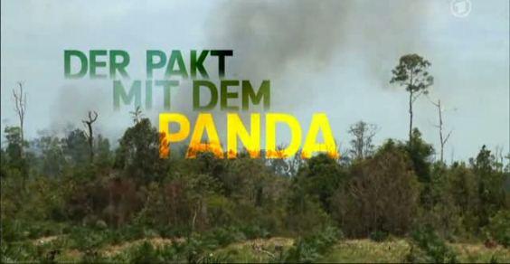patto_panda