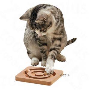 giochi_gatti
