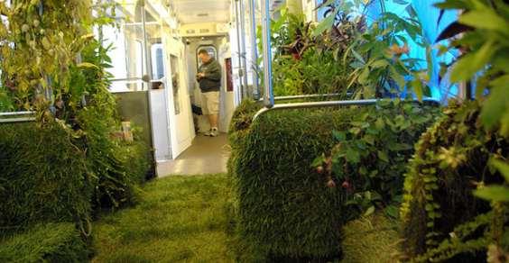 giardino_mobile