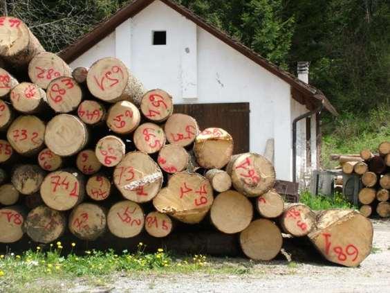sa_di_legno3