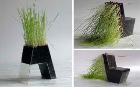 coltivare_piante_arredamento2