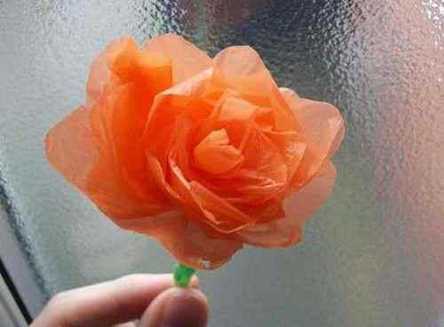 fiori_buste_di_plastica