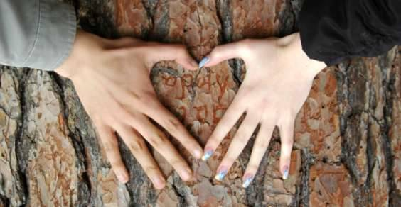 san_valentino_alberi
