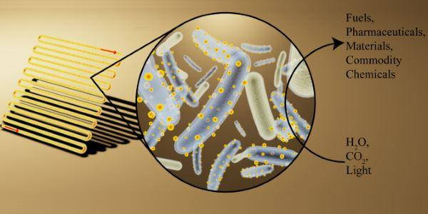 batteri CO<sub>2</sub>