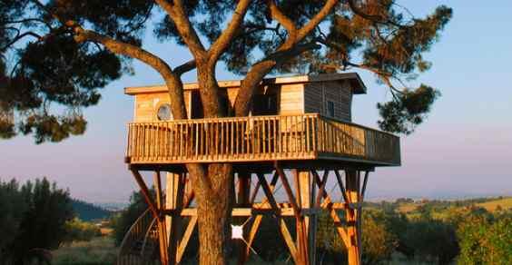 case albero made italy