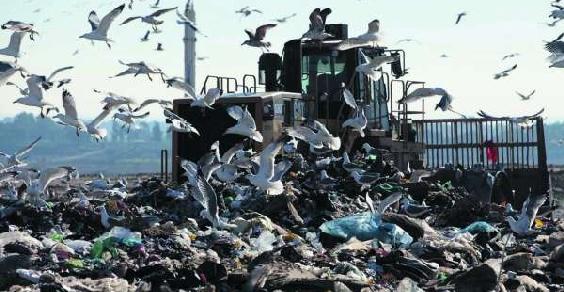 discarica-rifiuti-riano
