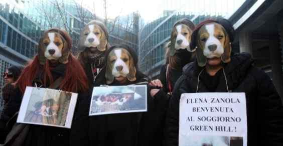 green_Hill_flash_mob
