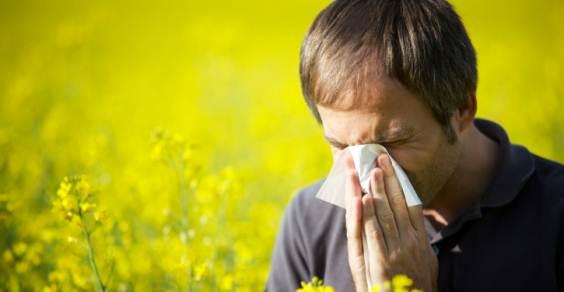 allergie sintomi