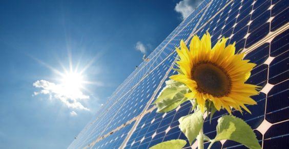 crescita fotovoltaico
