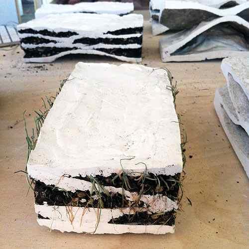 brick biotopes 2