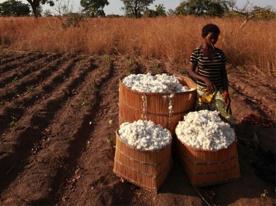 burkina-faso-cotton-2-537x402