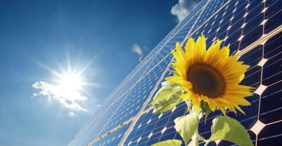 fotovoltaico organico
