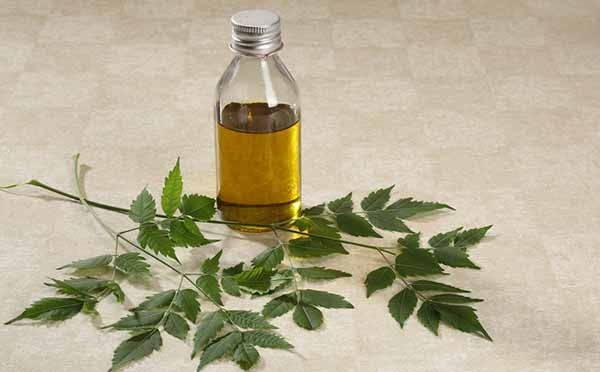 olio neem