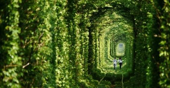 tunnel main1