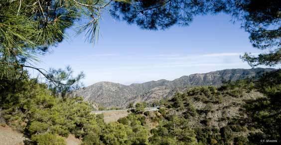 vista-monti-troodos