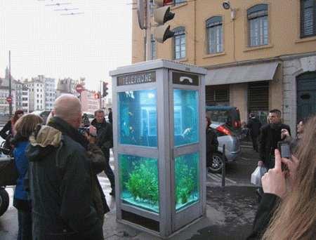 aquarium phone 2